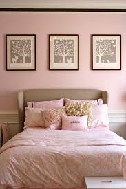 Gray And Pink Bedroom by Best 20 Pink Toddler Rooms Ideas On Pinterest U2014no Signup Required
