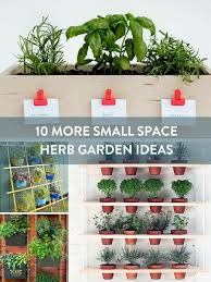 Bonnie Plants Patio Tomato Roundup 10 More Small Space Herb Garden Ideas Curbly