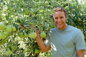 how to prune flowering pear trees hunker