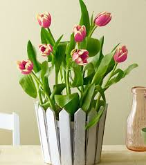 cheap mothers day flowers flowers on the budget with this cheap s day flowers gift png