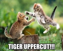 Uppercut Meme - uppercut