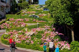 San Francisco Flower Garden by How To Visit Lombard Street The Right Way