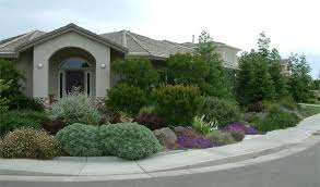 river friendly landscape rebate city of sacramento