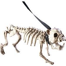 posable skeleton posable skeleton dog decoration white wantitall