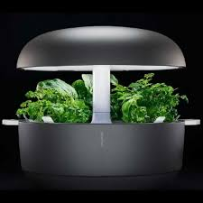 growing herbs indoors under lights the 18 built in led lights are optimally balanced for growing herbs