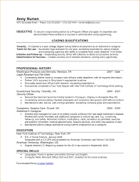 Professional Resume Builder Online by Free Online Professional Resume Builder Resume For Your Job