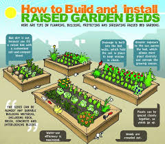 diy raised beds growing food anywhere info graphic gardens