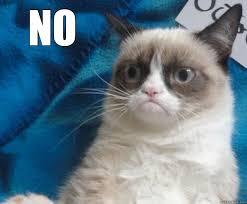 Grumpy Cat Meme No - no meme grumpy cat 100 images grumpy cat no memes quickmeme 18