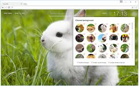 Theme Google Chrome Rabbit | cute bunny rabbit wallpaper hd new tab chrome web store