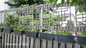 Backyard Landscaping Ideas For Privacy Privacy Fence U0026 Screen Ideas For The Garden Empress Of Dirt