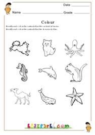 identify the animals that live on land and water activity sheets