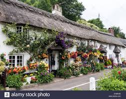 floral displays outside coombe cottage and doreen s garden in