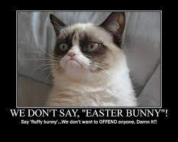 Angry Bunny Meme - the fryeburg free press easter bunny runs afoul of grumpy kitty