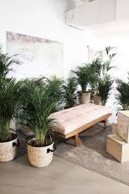 Zen Interior 37 Best Zen Office Images On Pinterest Zen Office Home And