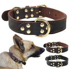 belgian shepherd for sale philippines best real leather dog collars for german shepherd rottweiler