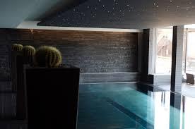 hotel u0026 resort blue indoor infinity pool with small cactus in pot