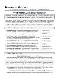 Writer Resume Executive Resume Writer Resume Example