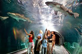 New Jersey natural attractions images Top 50 must see attractions in philadelphia visit philadelphia jpg