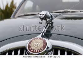 jaguar s type stock images royalty free images vectors
