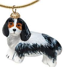 56 best for the of cavalier king charles spaniels images on