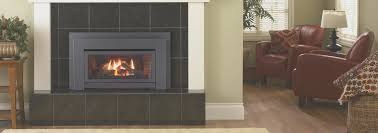 fireplace regency gas fireplace inserts style home design modern