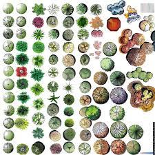 rendering graphics garden pinterest graphics landscaping