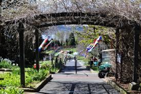 Botanic Gardens Hobart Festival At The Tasmanian Botanical Gardens Hobart