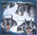 werewolves face