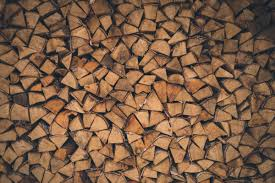 free images branch wood texture leaf floor wall log