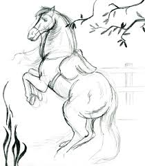 milozjam horse drawing simple