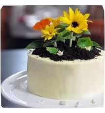 karen cheng u0027s fashion and life blog archive my garden birthday
