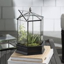 terrariums you u0027ll love wayfair