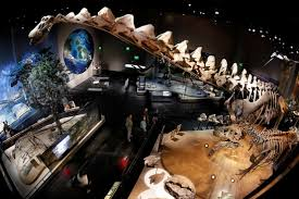 how dallas does philanthropy perot museum of nature and science wsj