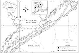 parana river map map of the paraná river floodplain showing the sling stations in