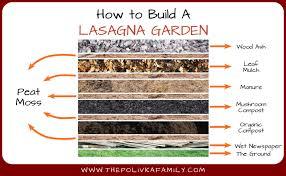 preparing vegetable beds for spring lasagna gardening revived