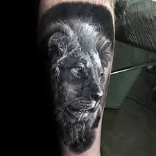 50 realistic lion tattoo designs for men felidae ink ideas