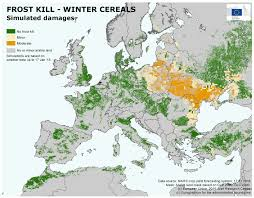 European Weather Map by Weakly Hardened Winter Cereals European Commission
