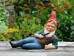 garden gnomes need homes will you adopt estately