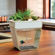 Indoor Gardening Ideas Indoor Gardening Indoor Herb Garden Indoor Herb Garden Ideas