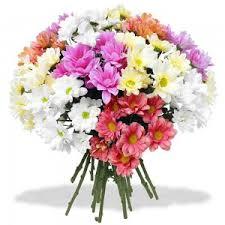 Sympathy Flowers Message - condolences messages faire livrer des fleurs