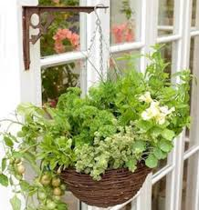 indoor herb garden ideas 10 indoor herb garden ideas nothing is