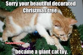 Tree Meme - the christmas tree a giant cat toy funny cat christmas meme