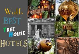 6 Luxury Tree House Hotels in the world Global Hospitality Portal