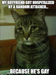 Memes For My Boyfriend - depressed cat meme imgflip