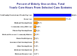 high resolution nursing home care plans 10 home care plan what is long term care