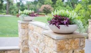 Landscapers Supply Greenville by Best Garden And Landscape Supplies In Dallas Houzz