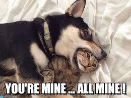 Mine Meme - you re mine all mine you re mine meme on memegen