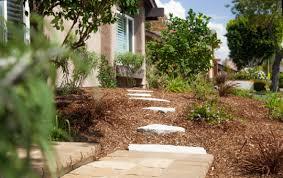 orange county drought tolerant landscaping
