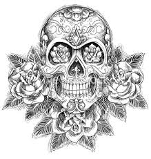 sketchy skull with roses vector by krookedeye on vectorstock