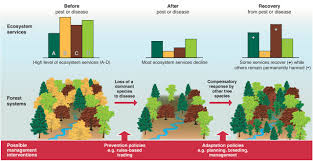 the consequence of tree pests and diseases for ecosystem services